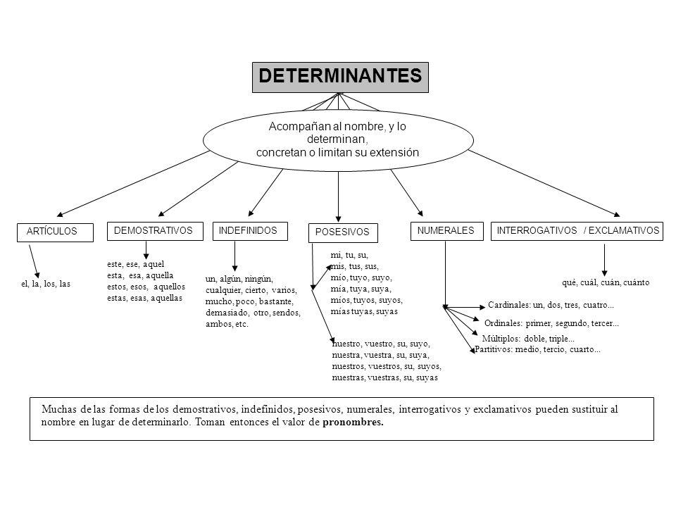 DETERMINANTES ARTÍCULOS DEMOSTRATIVOSINDEFINIDOS POSESIVOS NUMERALESINTERROGATIVOS / EXCLAMATIVOS Acompañan al nombre, y lo determinan, concretan o li