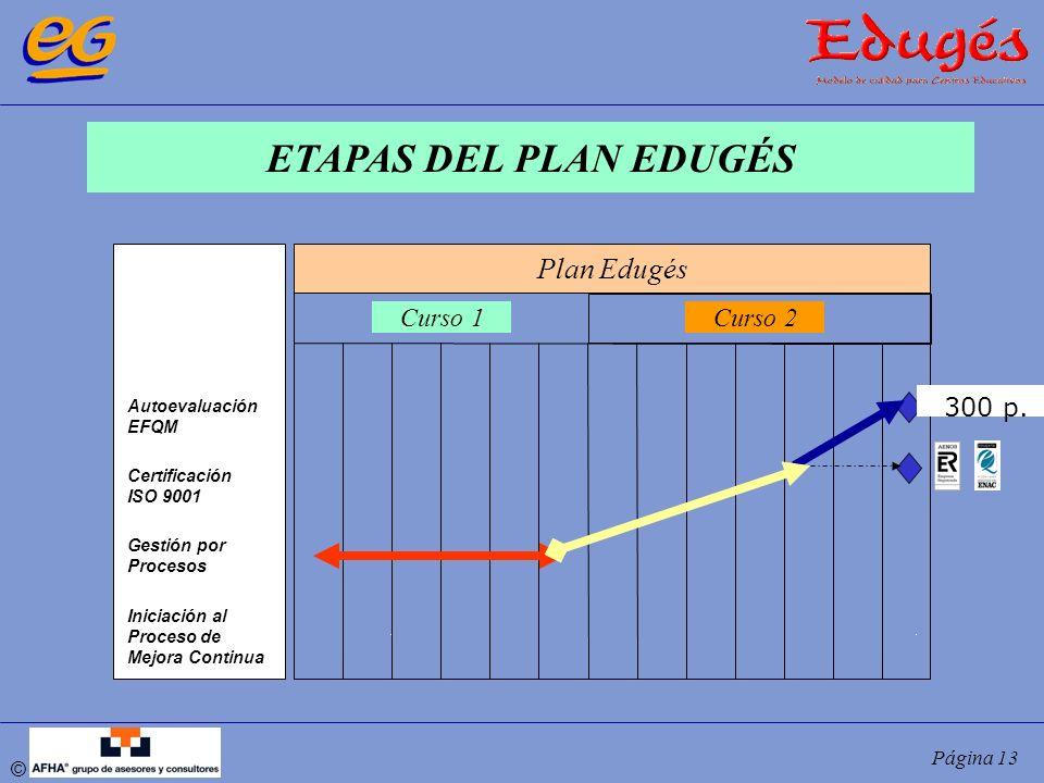© Página 13 ETAPAS DEL PLAN EDUGÉS Autoevaluación EFQM Certificación ISO 9001 Gestión por Procesos Iniciación al Proceso de Mejora Continua Plan Edugé