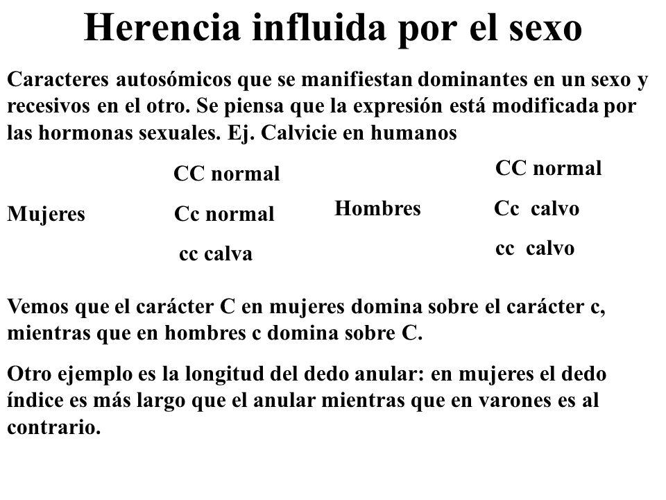 Herencia influida por el sexo Caracteres autosómicos que se manifiestan dominantes en un sexo y recesivos en el otro. Se piensa que la expresión está