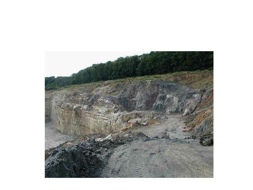 Contenido del Es.I.A Estudio ambiental propiamente dicho Es una descripción del medio donde se realizará la acción o proyecto.