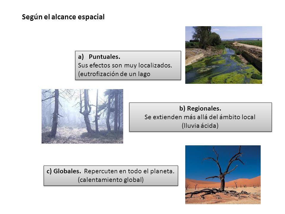 Según el alcance espacial a)Puntuales. Sus efectos son muy localizados. (eutrofización de un lago a)Puntuales. Sus efectos son muy localizados. (eutro