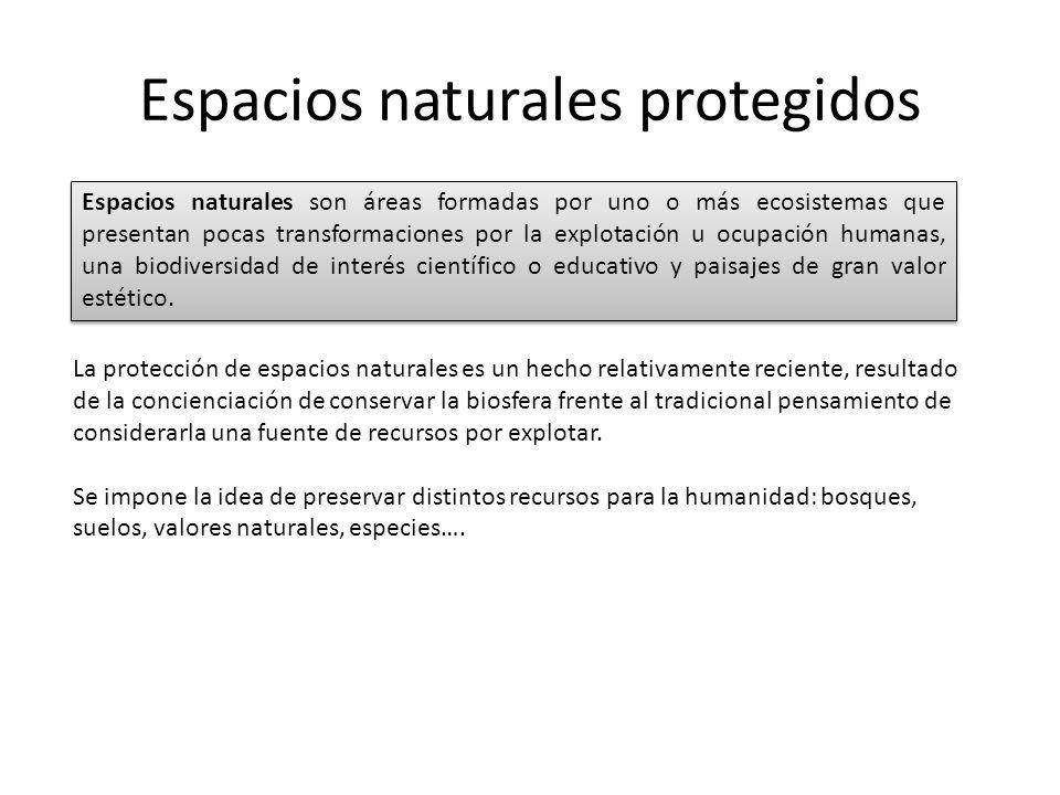 Espacios naturales protegidos La protección de espacios naturales es un hecho relativamente reciente, resultado de la concienciación de conservar la b