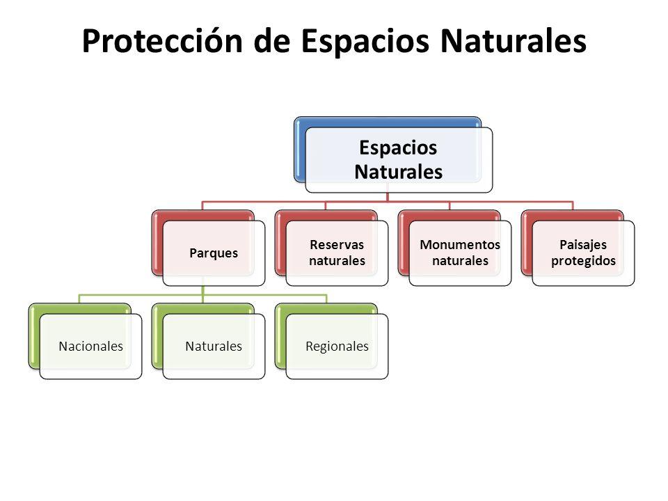 Protección de Espacios Naturales Espacios Naturales ParquesNacionalesNaturalesRegionales Reservas naturales Monumentos naturales Paisajes protegidos