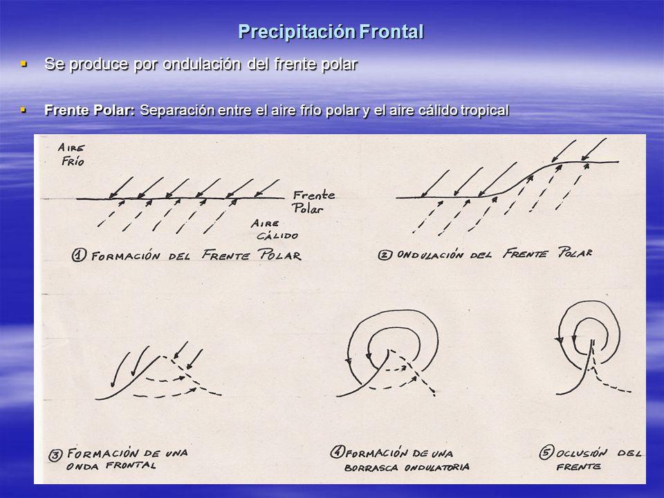 Precipitación Frontal Se produce por ondulación del frente polar Se produce por ondulación del frente polar Frente Polar: Separación entre el aire frí