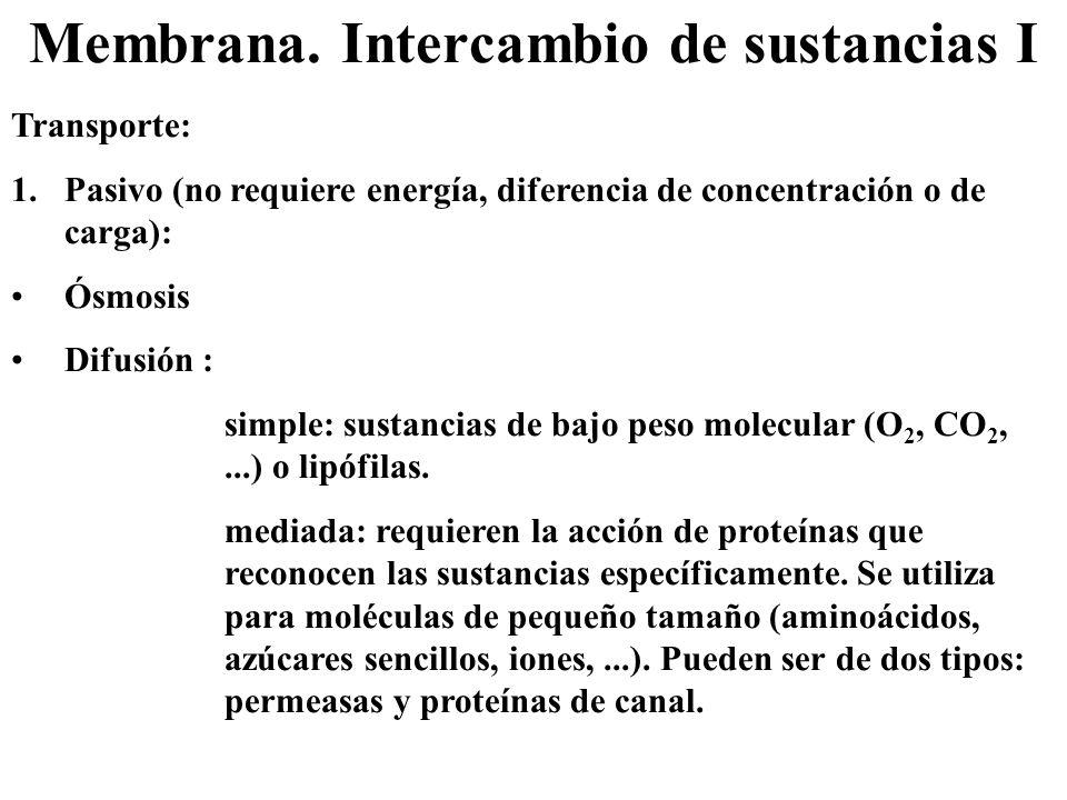 Membrana. Intercambio de sustancias I Transporte: 1.Pasivo (no requiere energía, diferencia de concentración o de carga): Ósmosis Difusión : simple: s