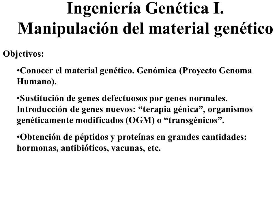 Ingeniería Genética I. Manipulación del material genético Objetivos: Conocer el material genético. Genómica (Proyecto Genoma Humano). Sustitución de g