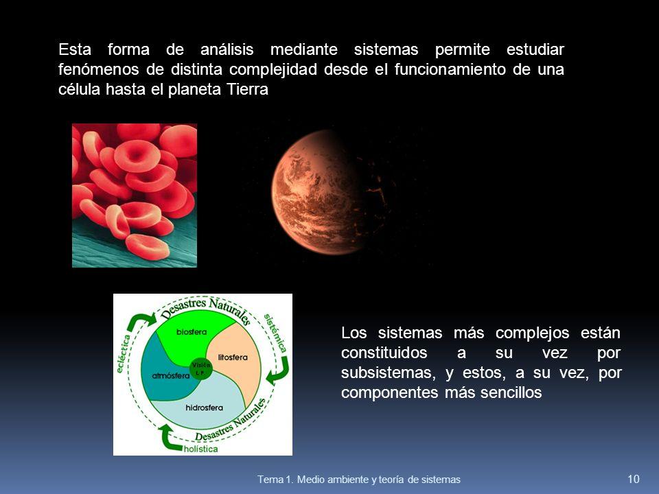Esta forma de análisis mediante sistemas permite estudiar fenómenos de distinta complejidad desde el funcionamiento de una célula hasta el planeta Tie