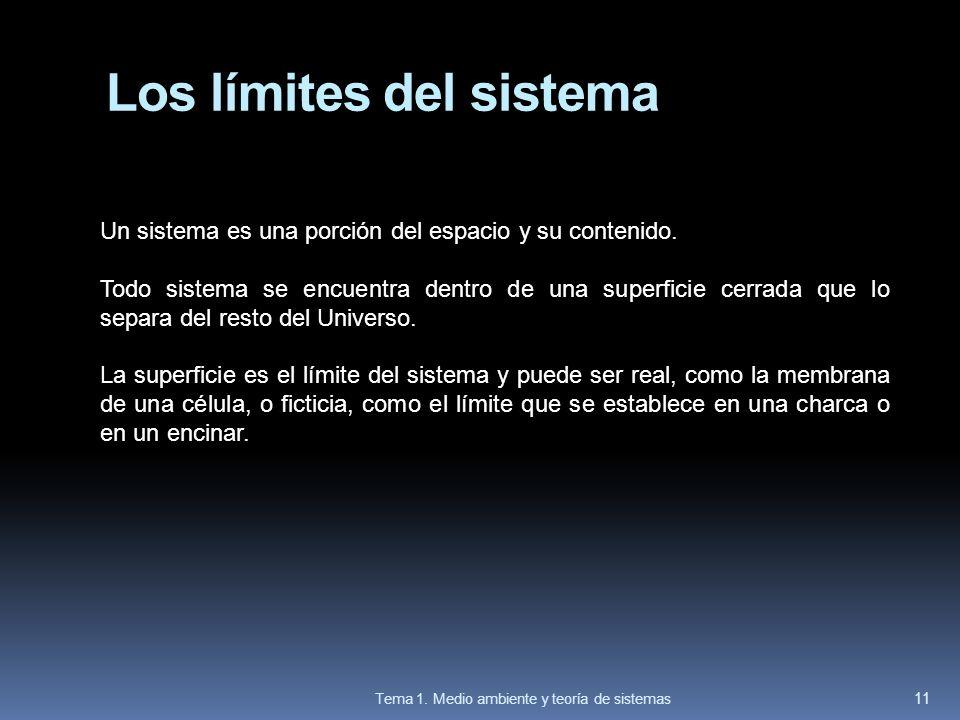 Los límites del sistema Un sistema es una porción del espacio y su contenido. Todo sistema se encuentra dentro de una superficie cerrada que lo separa