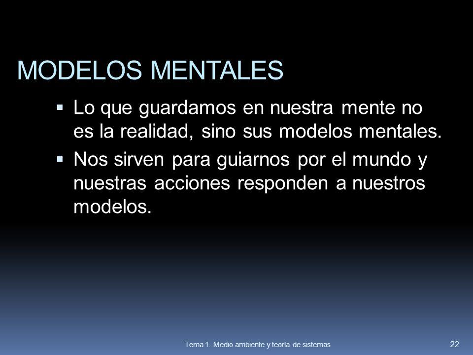 MODELOS MENTALES Lo que guardamos en nuestra mente no es la realidad, sino sus modelos mentales. Nos sirven para guiarnos por el mundo y nuestras acci