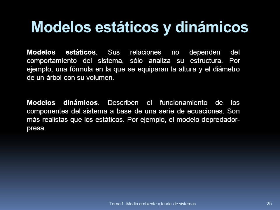 Modelos estáticos y dinámicos Modelos estáticos. Sus relaciones no dependen del comportamiento del sistema, sólo analiza su estructura. Por ejemplo, u