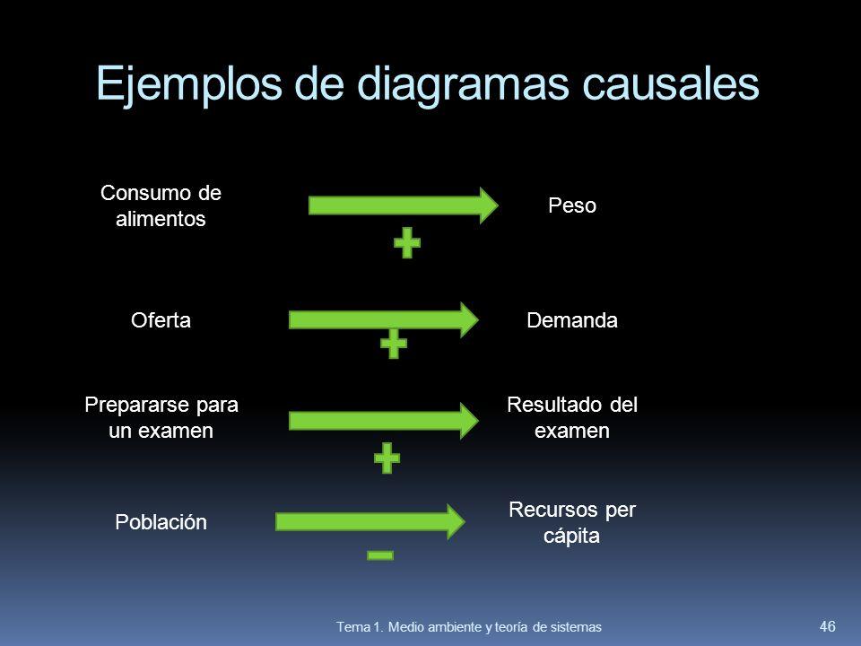 Ejemplos de diagramas causales Tema 1. Medio ambiente y teoría de sistemas 46 Consumo de alimentos Peso Población Prepararse para un examen OfertaDema