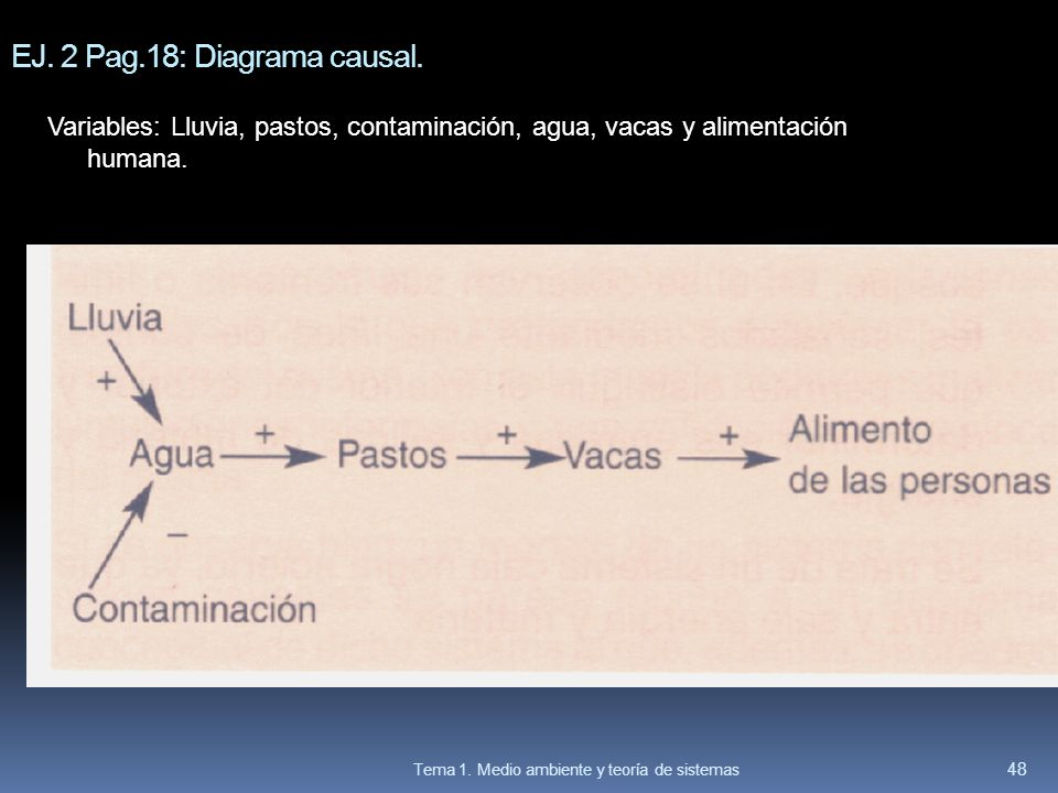 EJ. 2 Pag.18: Diagrama causal. Variables: Lluvia, pastos, contaminación, agua, vacas y alimentación humana. 48 Tema 1. Medio ambiente y teoría de sist