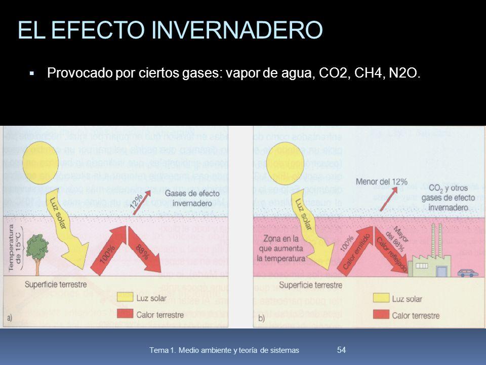 EL EFECTO INVERNADERO Provocado por ciertos gases: vapor de agua, CO2, CH4, N2O. 54 Tema 1. Medio ambiente y teoría de sistemas