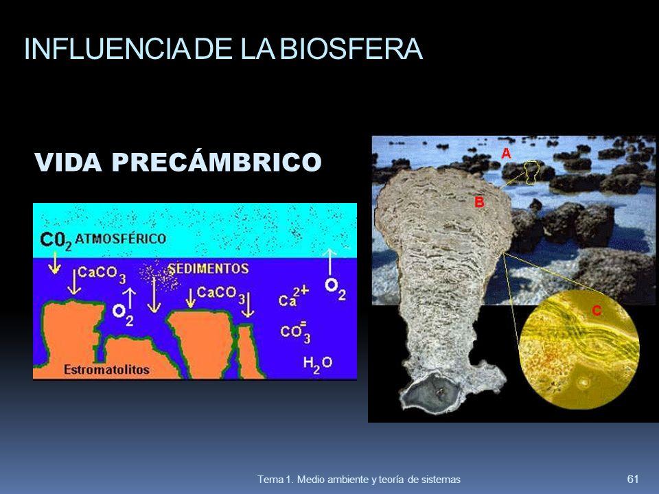 INFLUENCIA DE LA BIOSFERA VIDA PRECÁMBRICO 61 Tema 1. Medio ambiente y teoría de sistemas