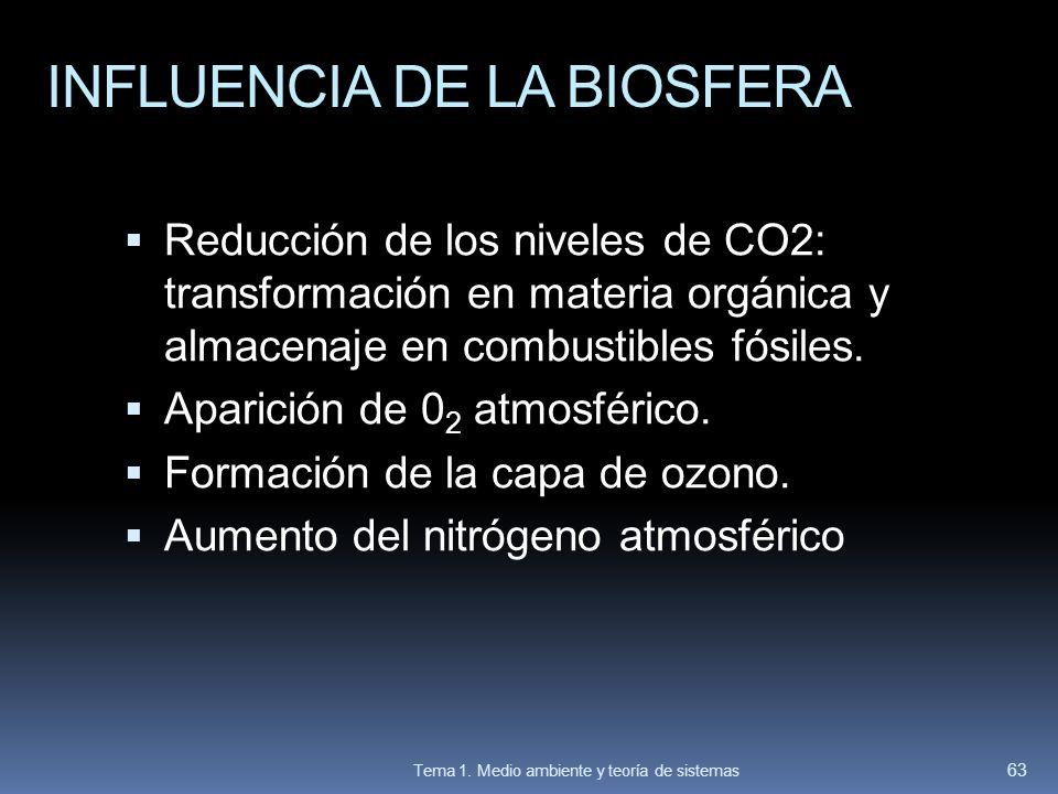 INFLUENCIA DE LA BIOSFERA Reducción de los niveles de CO2: transformación en materia orgánica y almacenaje en combustibles fósiles. Aparición de 0 2 a