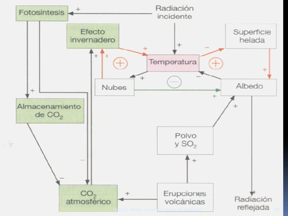 64 Tema 1. Medio ambiente y teoría de sistemas