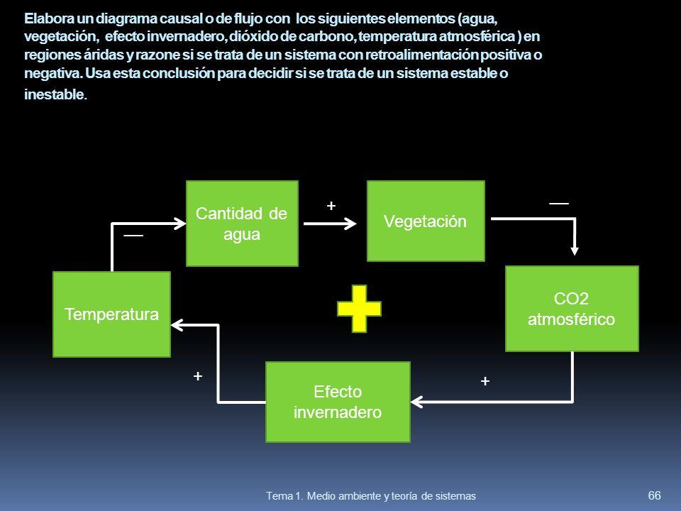 Elabora un diagrama causal o de flujo con los siguientes elementos (agua, vegetación, efecto invernadero, dióxido de carbono, temperatura atmosférica