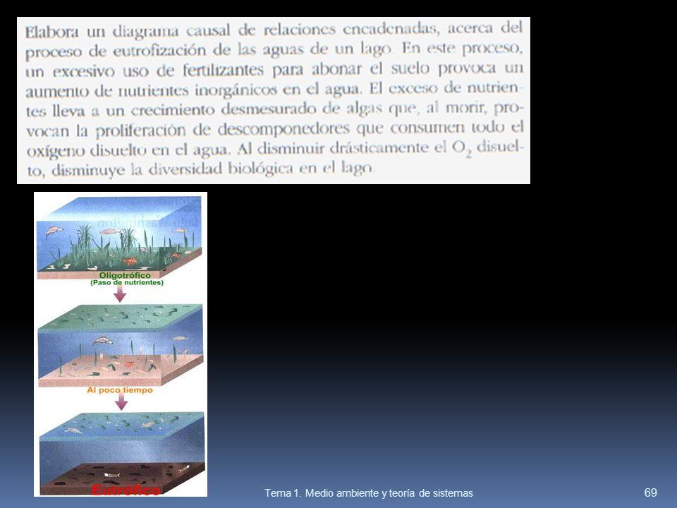 69 Tema 1. Medio ambiente y teoría de sistemas