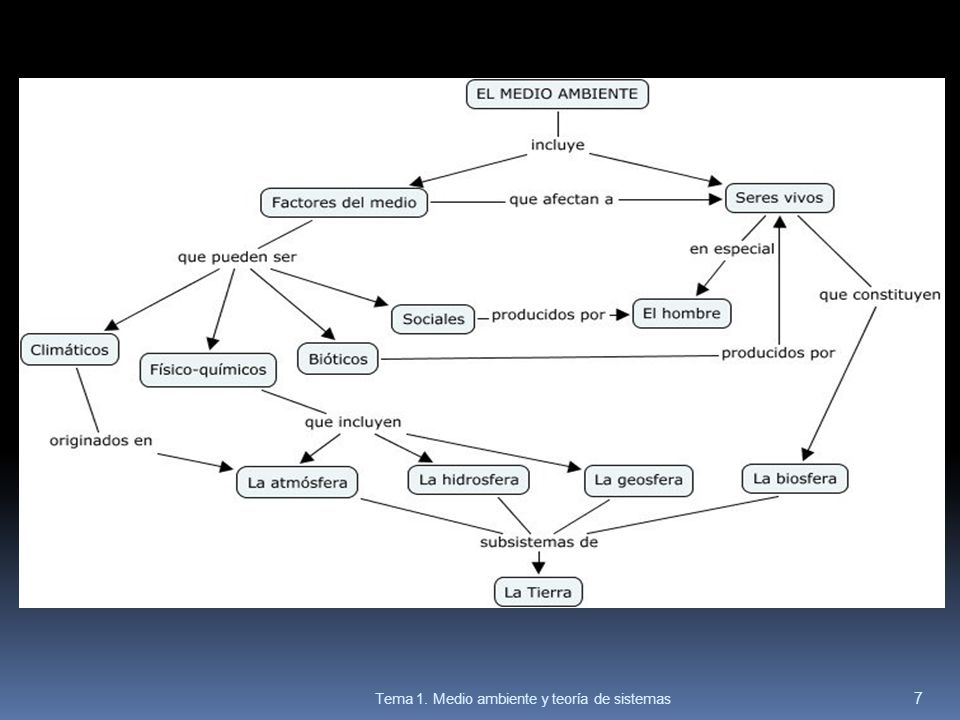 EJ.2 Pag.18: Diagrama causal.