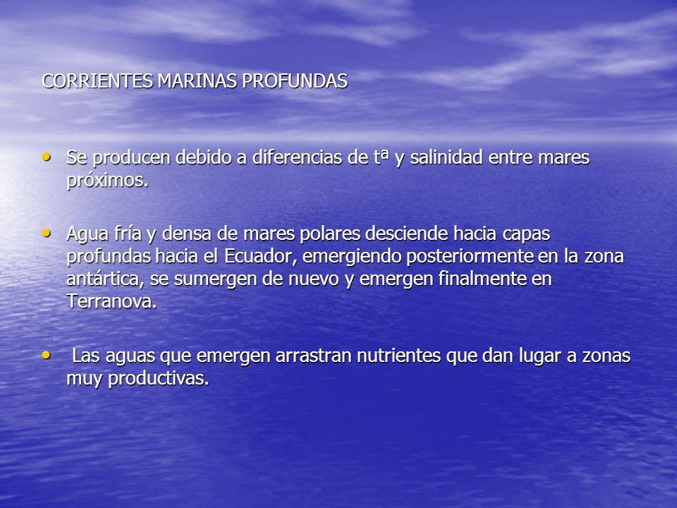 CORRIENTES MARINAS PROFUNDAS Se producen debido a diferencias de tª y salinidad entre mares próximos. Se producen debido a diferencias de tª y salinid