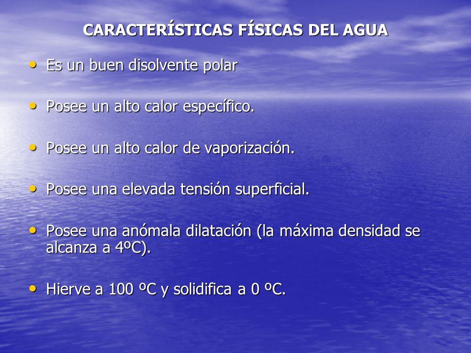 CARACTERÍSTICAS FÍSICAS DEL AGUA Es un buen disolvente polar Es un buen disolvente polar Posee un alto calor específico. Posee un alto calor específic