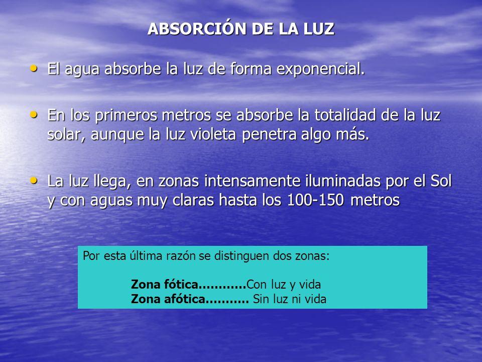 ABSORCIÓN DE LA LUZ El agua absorbe la luz de forma exponencial. El agua absorbe la luz de forma exponencial. En los primeros metros se absorbe la tot