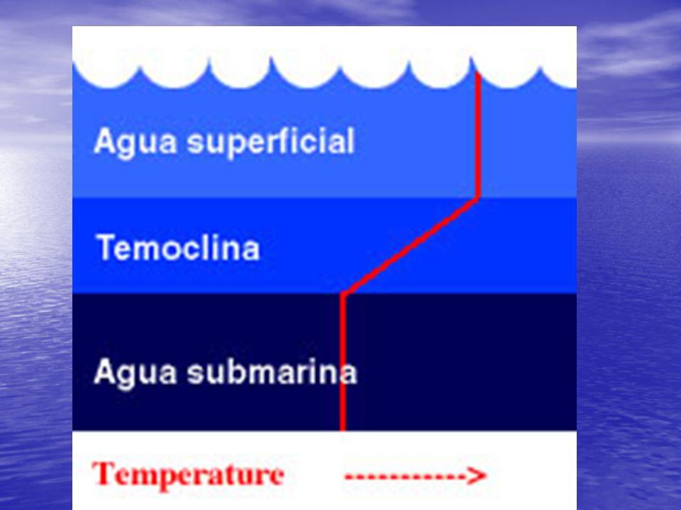 COMPOSICIÓN QUÍMICA DE LA HIDROSFERA El agua presenta disueltos gases y sales.