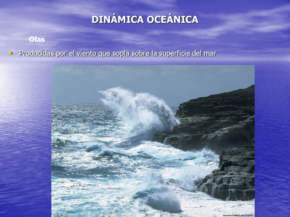 DINÁMICA OCEÁNICA Producidas por el viento que sopla sobre la superficie del mar Producidas por el viento que sopla sobre la superficie del mar Olas