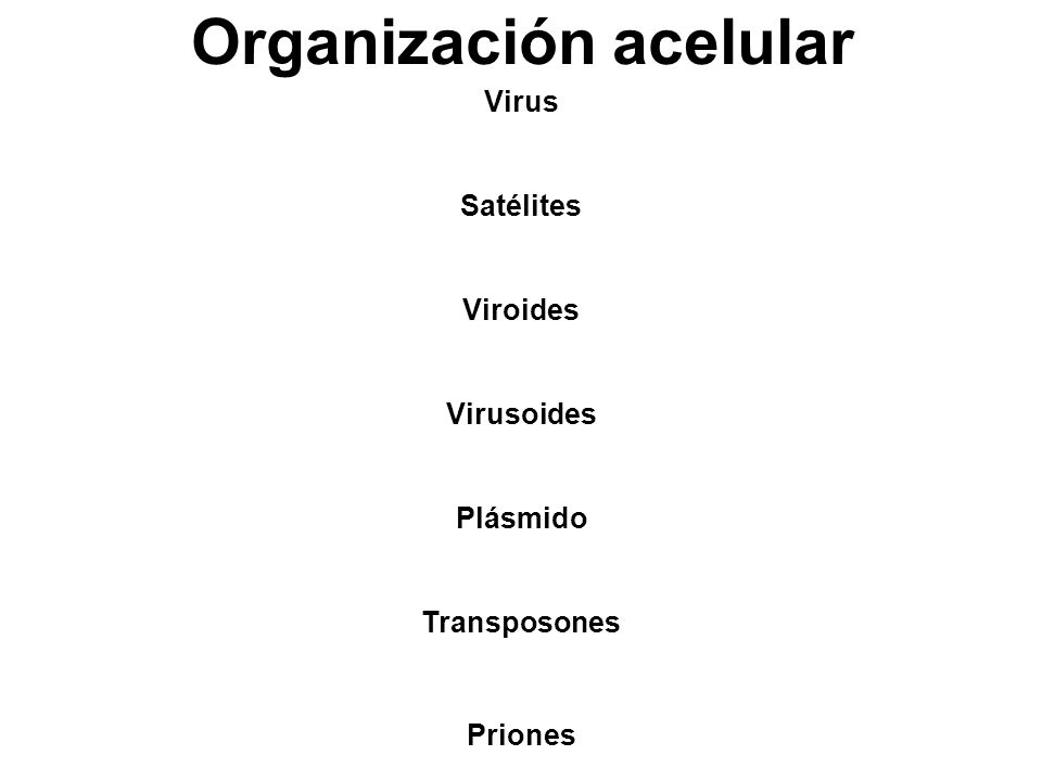 Organización acelular Virus Satélites Viroides Virusoides Plásmido Transposones Priones