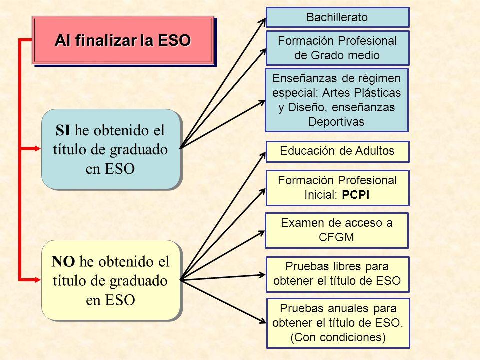 Al finalizar la ESO SI he obtenido el título de graduado en ESO NO he obtenido el título de graduado en ESO Bachillerato Formación Profesional de Grad