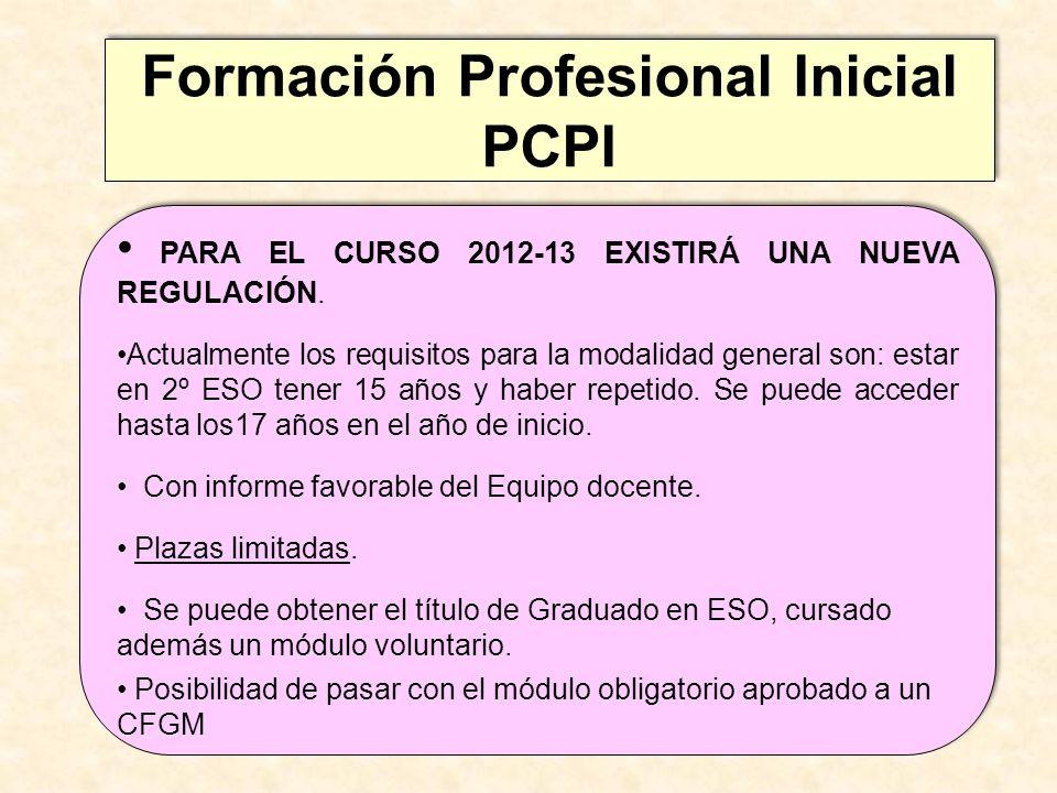 Formación Profesional Inicial PCPI Formación Profesional Inicial PCPI PARA EL CURSO 2012-13 EXISTIRÁ UNA NUEVA REGULACIÓN. Actualmente los requisitos