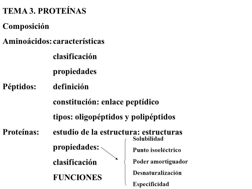 TEMA 3. PROTEÍNAS Composición Aminoácidos:características clasificación propiedades Péptidos:definición constitución: enlace peptídico tipos: oligopép