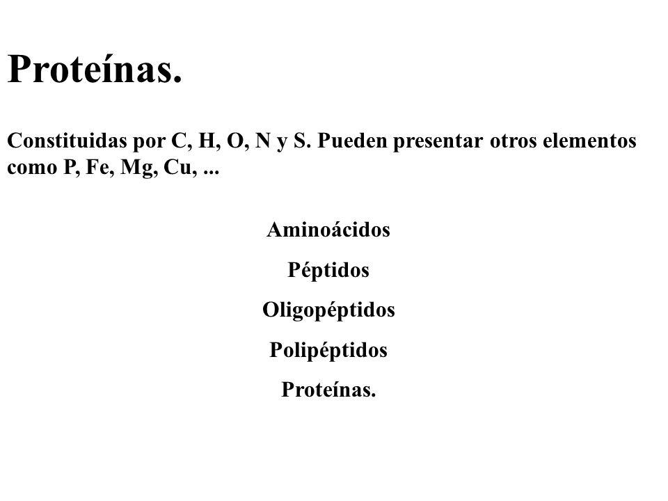 Proteínas. Constituidas por C, H, O, N y S. Pueden presentar otros elementos como P, Fe, Mg, Cu,... Aminoácidos Péptidos Oligopéptidos Polipéptidos Pr
