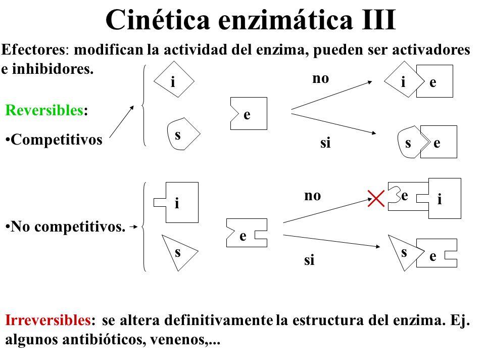 Cinética enzimática III Efectores: modifican la actividad del enzima, pueden ser activadores e inhibidores. Reversibles: Competitivos No competitivos.