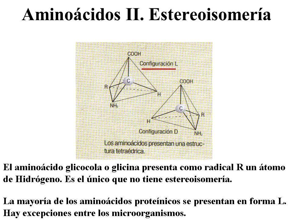 Especificidad enzimática Teoría de la llave-cerradura de Fisher Teoría del ajuste inducido Especificidad de sustrato: Absoluta: sólo reconoce un sustrato.