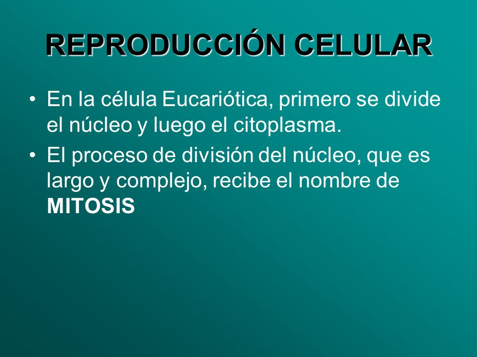 REPRODUCCIÓN CELULAR En la célula Eucariótica, primero se divide el núcleo y luego el citoplasma. El proceso de división del núcleo, que es largo y co