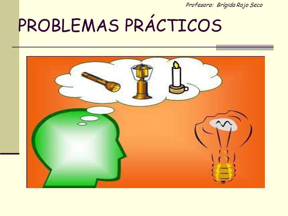 Profesora: Brígida Rojo Seco PROBLEMAS PRÁCTICOS