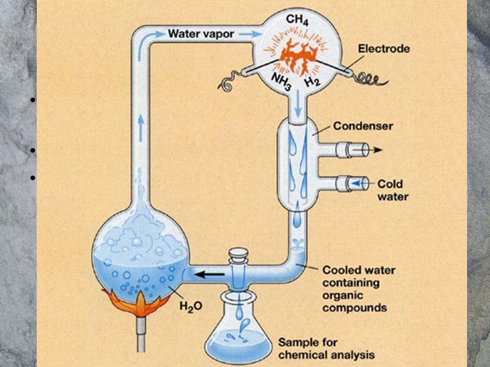 Hipótesis actual del origen de la vida Las primeras moléculas orgánicas se formaron por reacciones que se dieron a partir de las sustancias presentes en la sopa prebiótica del mar primitivo.