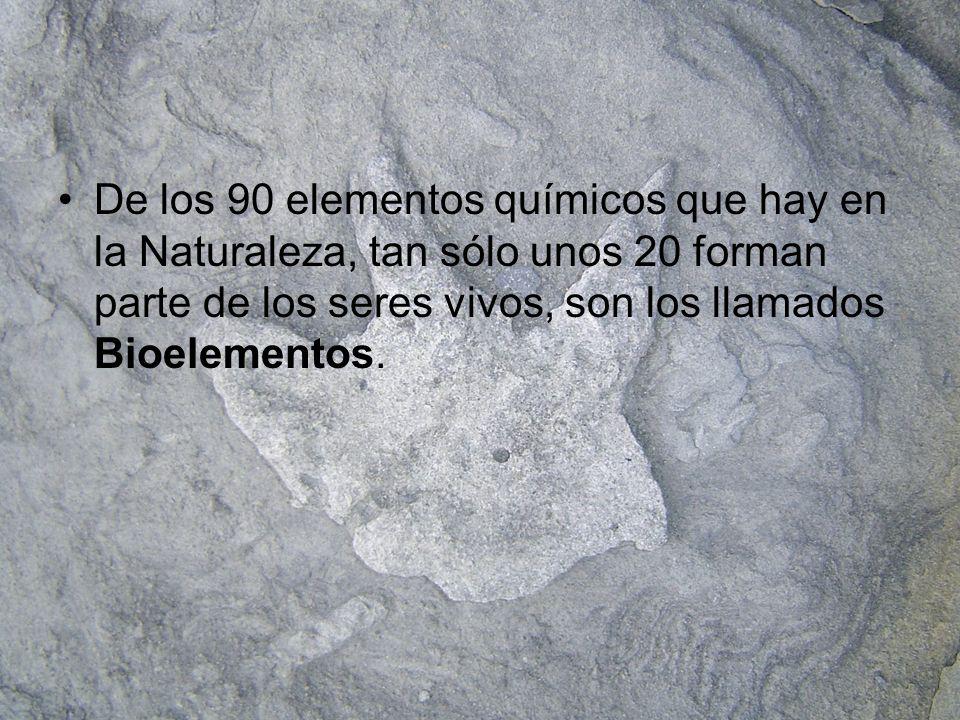 Composición química de los seres vivos O 47H63 Si28O25,5 Al7,9C9,5 Fe4,5N1,4 Ca3,5Ca0,3 Na2,5P0,2 COMPOSICIÓN QUÍMICA (En porcentaje de átomos) CORTEZA TERRESTRECUERPO HUMANO