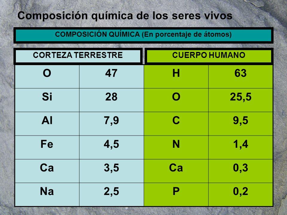 De los Bioelementos el C, el H y el O son con mucho los más abundantes.