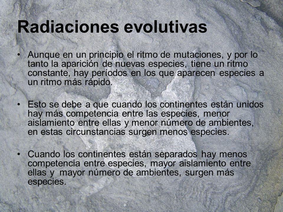 Radiaciones evolutivas Aunque en un principio el ritmo de mutaciones, y por lo tanto la aparición de nuevas especies, tiene un ritmo constante, hay pe