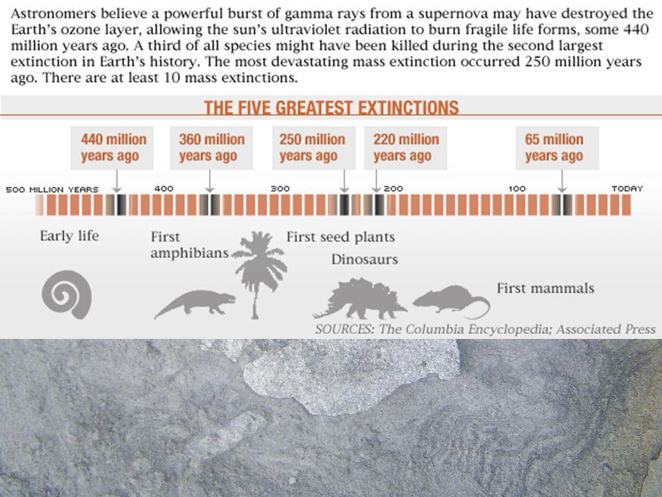 Las causas de estas extinciones han sido variadas: –Cambios en el clima: glaciación(hace 440 m.a.) –La anoxia (falta de oxígeno en el agua marina) provocada por el calentamiento de la atmósfera debido a un intenso vulcanismo.