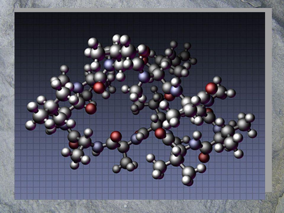 Aunque el resto de los elementos están en menor proporción son igualmente importante para la vida.