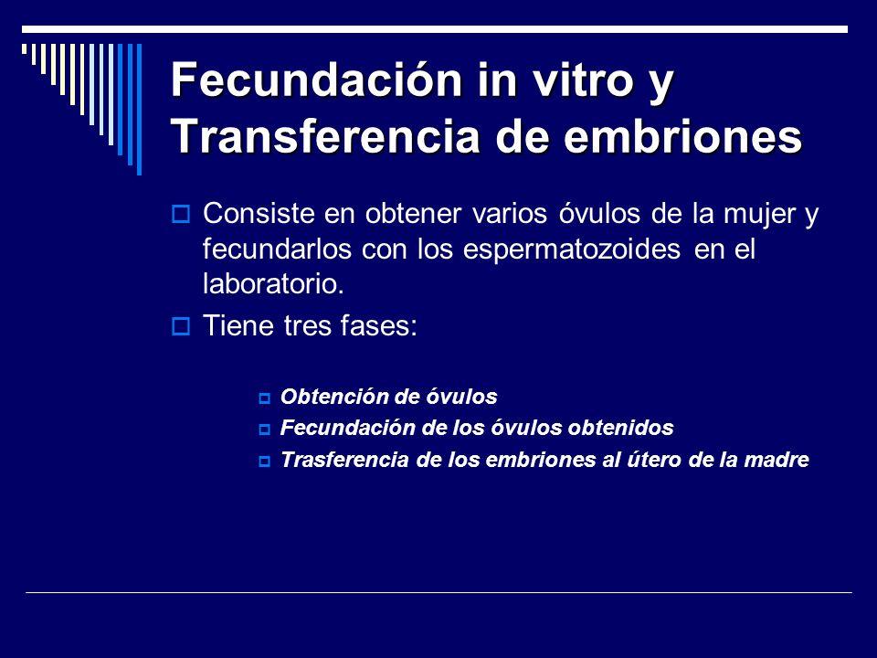 Fecundación in vitro y Transferencia de embriones Consiste en obtener varios óvulos de la mujer y fecundarlos con los espermatozoides en el laboratori