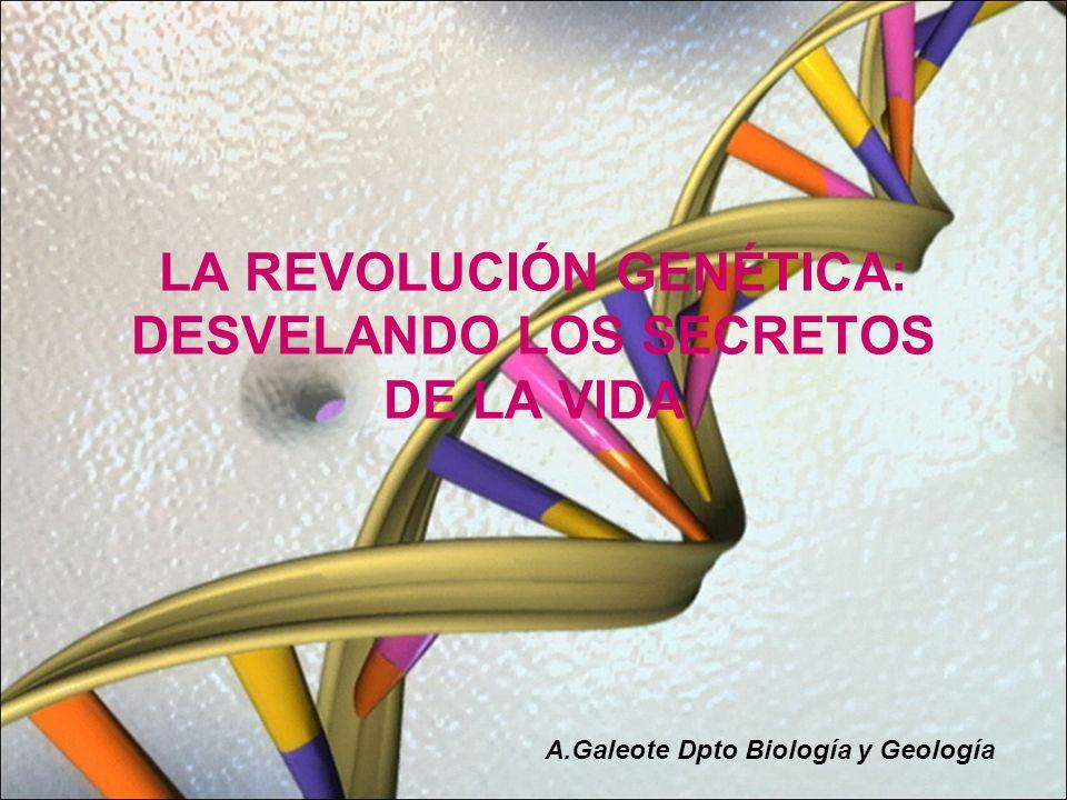 LA REVOLUCIÓN GENÉTICA: DESVELANDO LOS SECRETOS DE LA VIDA A.Galeote Dpto Biología y Geología