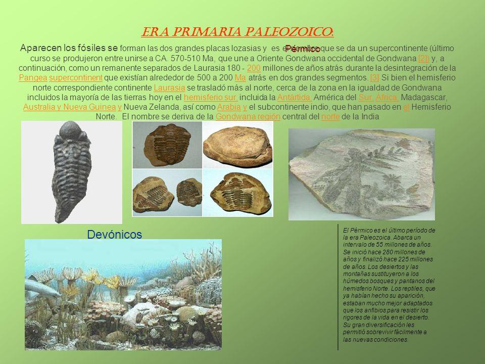 Era Primaria Paleozoico: Aparecen los fósiles se forman las dos grandes placas lozasias y es el nombre que se da un supercontinente (último curso se p
