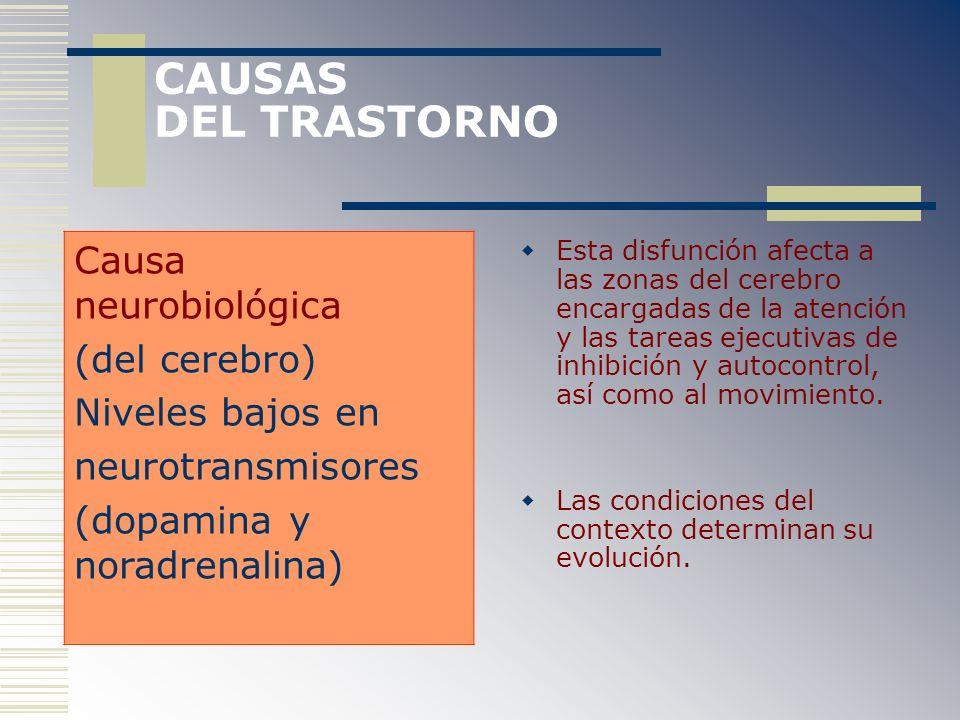 CAUSAS DEL TRASTORNO Esta disfunción afecta a las zonas del cerebro encargadas de la atención y las tareas ejecutivas de inhibición y autocontrol, así