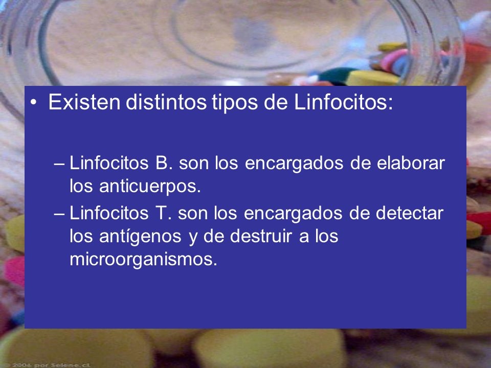 Existen distintos tipos de Linfocitos: –Linfocitos B. son los encargados de elaborar los anticuerpos. –Linfocitos T. son los encargados de detectar lo