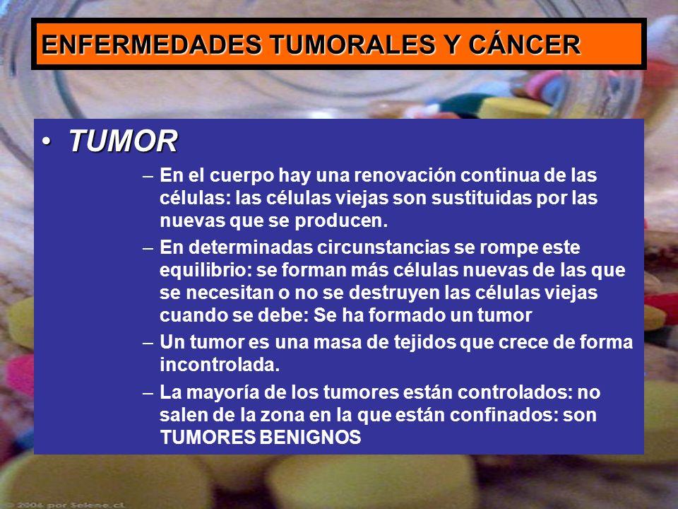 ENFERMEDADES TUMORALES Y CÁNCER TUMORTUMOR –En el cuerpo hay una renovación continua de las células: las células viejas son sustituidas por las nuevas