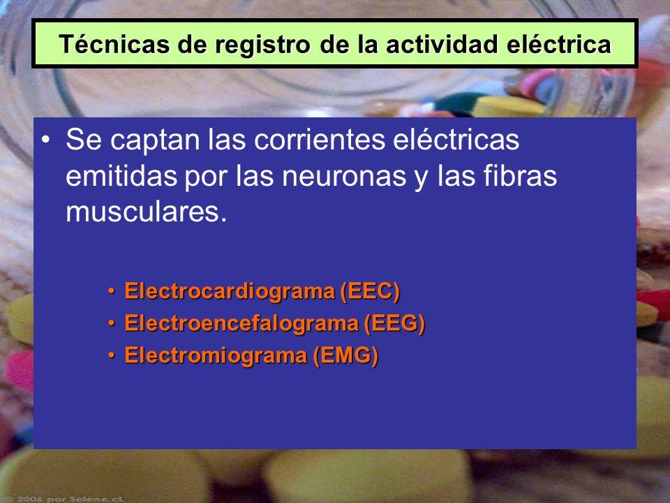 Técnicas de registro de la actividad eléctrica Se captan las corrientes eléctricas emitidas por las neuronas y las fibras musculares. Electrocardiogra
